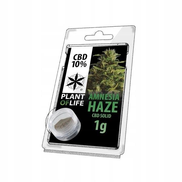 Hasz Amnesia Haze 10% CBD Plant Of Life